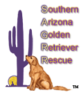 Southern Arizona Golden Retriever Rescue