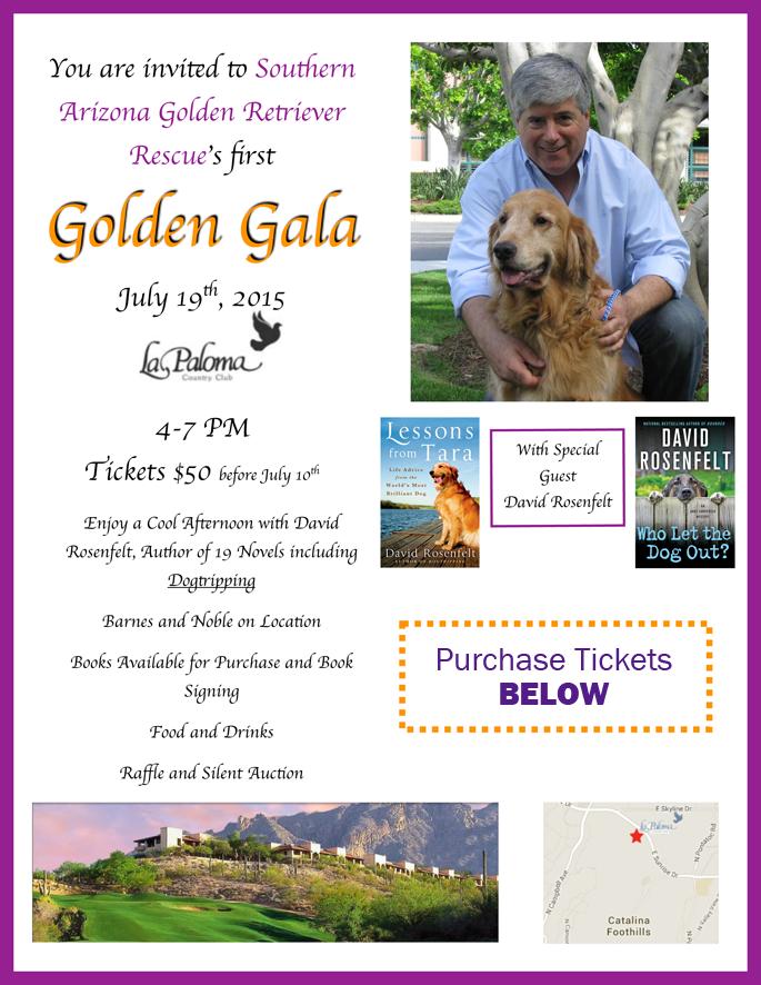 Golden-Gala-Webpage-landing-page
