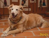 September Calendar Dog