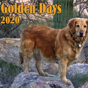 2020 SAGRR Calendar